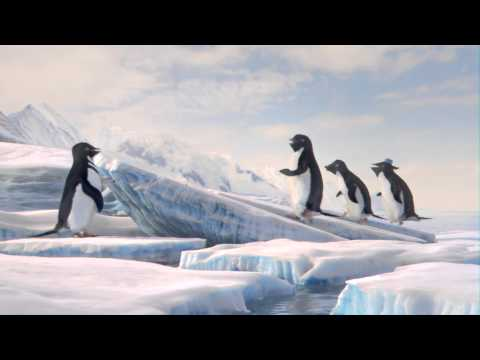 Discovery Penguins